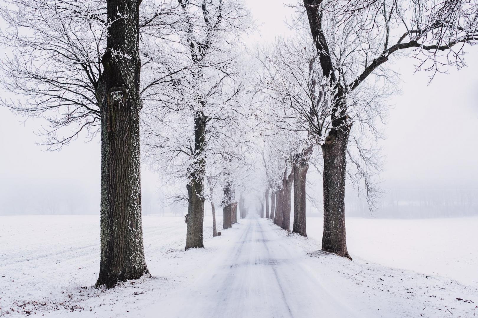 Continental WinterContact TS 860 S – a tél még soha nem volt ennyire legyőzhető!